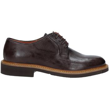 Topánky Muži Derbie Rogers AM001 Hnedá