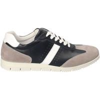 Topánky Muži Nízke tenisky IgI&CO 3121800 Modrá
