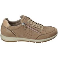 Topánky Muži Nízke tenisky Enval 3233022 Béžová