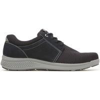 Topánky Muži Nízke tenisky Enval 3240800 Modrá