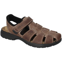 Topánky Muži Sandále Enval 3247522 Hnedá