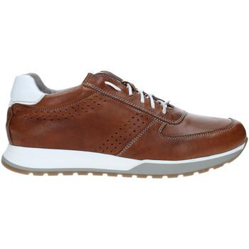 Topánky Muži Nízke tenisky Rogers 5065 Hnedá