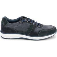 Topánky Muži Nízke tenisky Grunland SC4521 Modrá