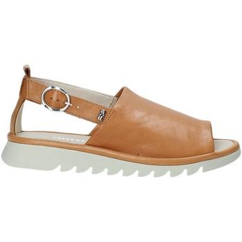Topánky Ženy Sandále Valleverde 41151 Hnedá