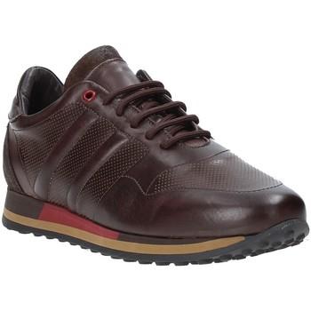 Topánky Muži Nízke tenisky Exton 246 Hnedá
