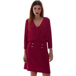 Oblečenie Ženy Krátke šaty Gaudi 921FD15037 Ružová