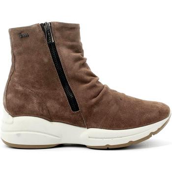 Topánky Ženy Čižmičky IgI&CO 4148311 Hnedá