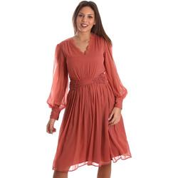Oblečenie Ženy Krátke šaty Fracomina FR19FMREMI Ružová