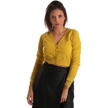 Oblečenie Ženy Cardigany Fracomina FR19FM823 žltá