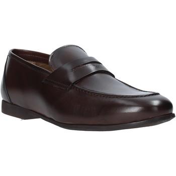 Topánky Muži Mokasíny Rogers CAR01 Hnedá