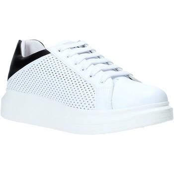 Topánky Muži Nízke tenisky Rocco Barocco N5.3 Biely
