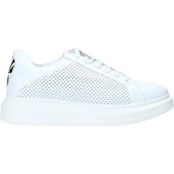 Topánky Muži Nízke tenisky Rocco Barocco N5 Biely
