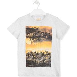 Oblečenie Deti Tričká s krátkym rukávom Losan 013-1017AL Biely