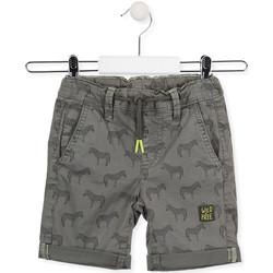 Oblečenie Deti Šortky a bermudy Losan 015-9006AL Zelená