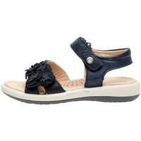 Topánky Dievčatá Sandále Naturino 0502724 04 Modrá