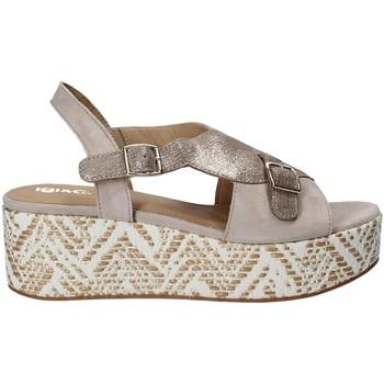 Topánky Ženy Sandále IgI&CO 1188 Šedá