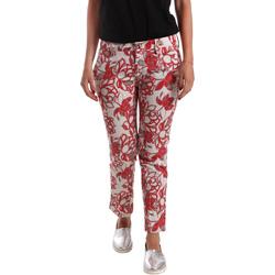 Oblečenie Ženy Nohavice Chinos a Carrot Café Noir JP242 Červená
