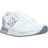 Topánky Ženy Nízke tenisky Napapijri NA4ET6 Striebro