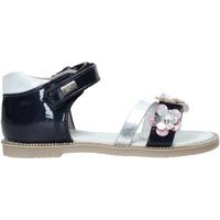Topánky Dievčatá Sandále Miss Sixty S20-SMS753 Modrá