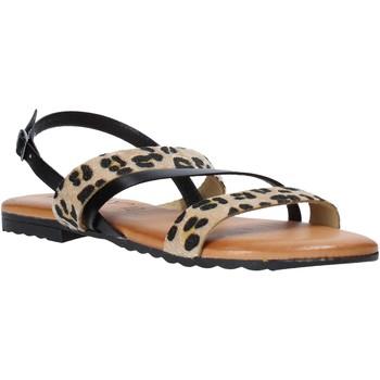 Topánky Ženy Sandále Jeiday JUNGLA-SALLY čierna