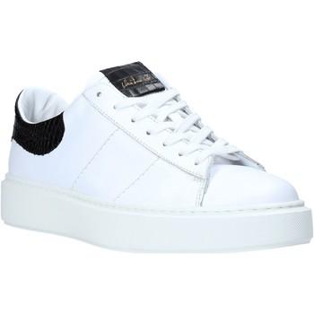 Topánky Muži Nízke tenisky Maritan G 210286MG Biely