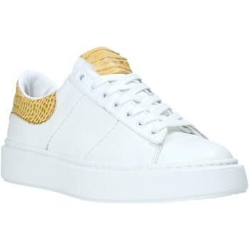 Topánky Ženy Nízke tenisky Maritan G 210345MG Biely