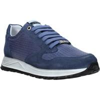 Topánky Muži Nízke tenisky Exton 751 Modrá