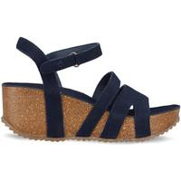 Topánky Ženy Sandále Docksteps DSE106445 Modrá