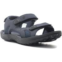 Topánky Muži Športové sandále Lotto L52292 Modrá