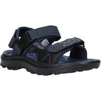 Topánky Muži Športové sandále Lotto L52294 Modrá