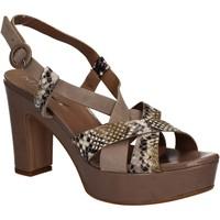 Topánky Ženy Sandále Mally 5832 Hnedá