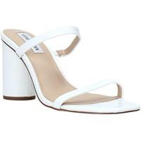 Topánky Ženy Sandále Steve Madden SMSKATO-WHTC Biely