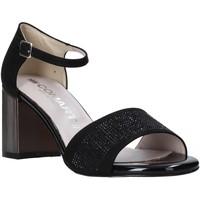 Topánky Ženy Sandále Comart 823368 čierna