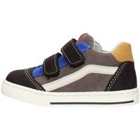 Topánky Chlapci Nízke tenisky Balocchi 602211 Multicolored