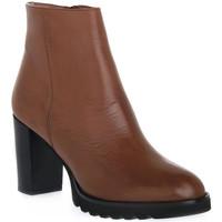 Topánky Ženy Čižmičky Priv Lab 906 CUOIO Marrone