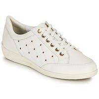 Topánky Ženy Nízke tenisky Geox D MYRIA H Biela / Zlatá