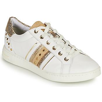 Topánky Ženy Nízke tenisky Geox D JAYSEN A Biela / Zlatá