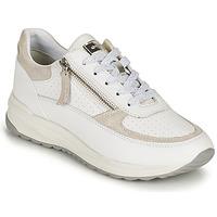 Topánky Ženy Nízke tenisky Geox D AIRELL A Biela / Béžová
