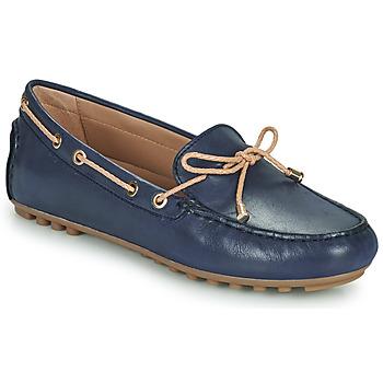 Topánky Ženy Mokasíny Geox D LEELYAN C Modrá / Béžová