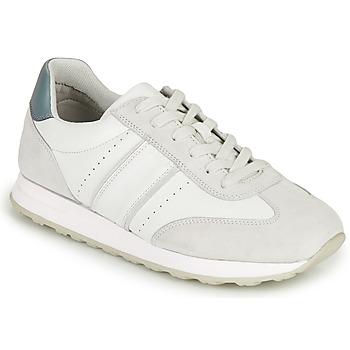 Topánky Muži Nízke tenisky Geox U FIDENZA B Biela / Modrá