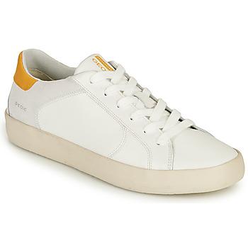 Topánky Muži Nízke tenisky Geox U WARLEY A Biela
