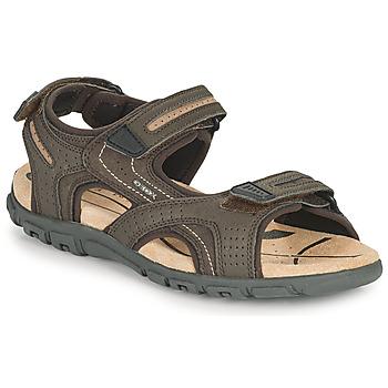 Topánky Muži Športové sandále Geox UOMO SANDAL STRADA D Hnedá / Béžová