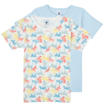 Oblečenie Chlapci Tričká s krátkym rukávom Petit Bateau MANUR Viacfarebná