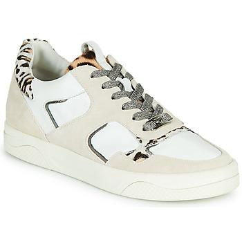 Topánky Ženy Nízke tenisky Mam'Zelle ARTIX Biela / Leopard