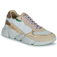 Topánky Ženy Nízke tenisky Serafini OREGON Biela / Zlatá