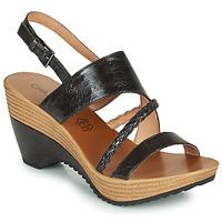 Topánky Ženy Sandále Chattawak JULIETTE Čierna
