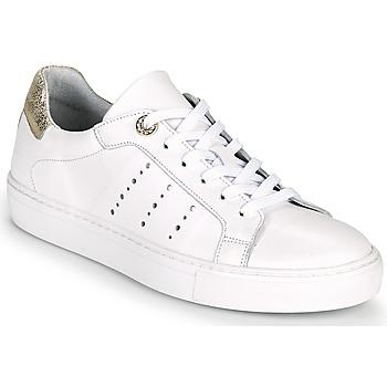 Topánky Ženy Nízke tenisky Myma PEGGUI Biela / Zlatá