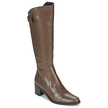 Topánky Ženy Čižmy do mesta Betty London SALINA Hnedá