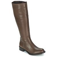 Topánky Ženy Čižmy do mesta Betty London CAVAK Hnedá