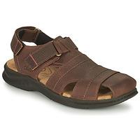 Topánky Muži Športové sandále Clarks HAPSFORD COVE Hnedá